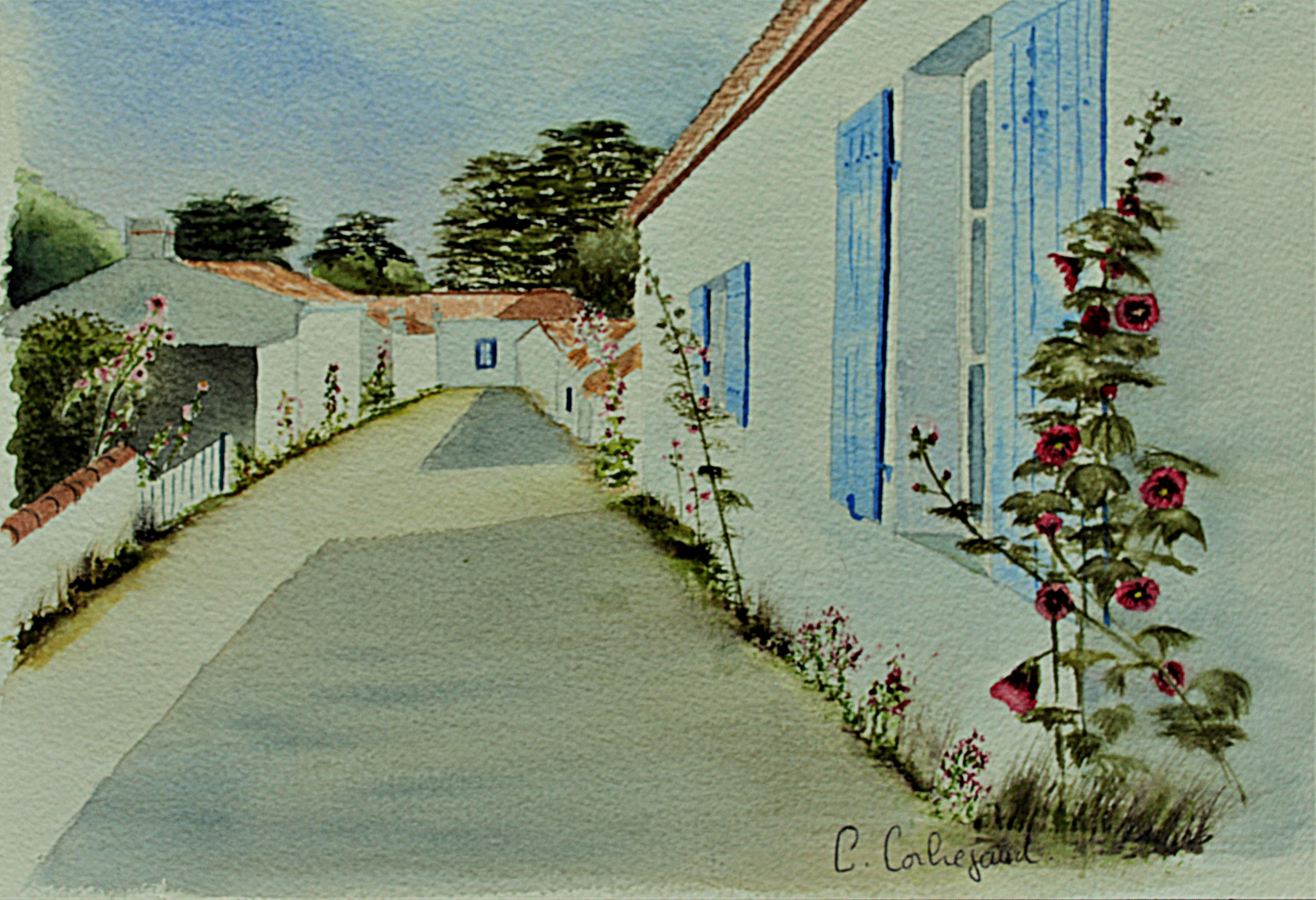 Chemin de l'Arée - Barbâtre