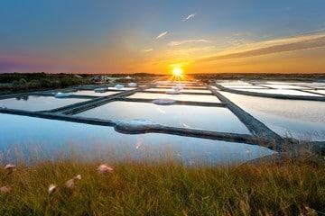 les marais salants de Noirmoutier